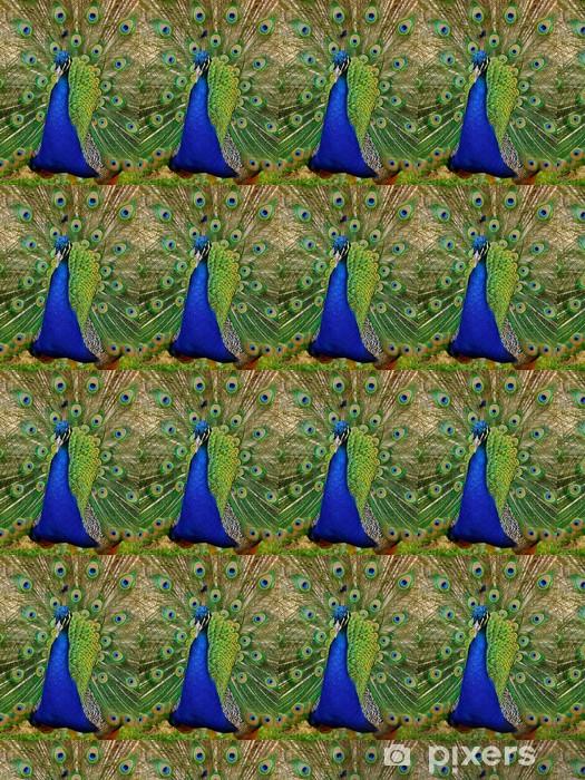 Vinylová tapeta na míru Krásné Peacock - Asie