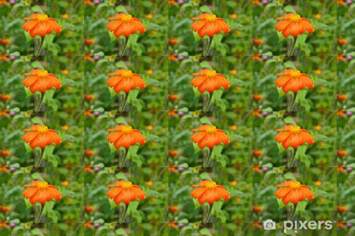 Tapeta na wymiar winylowa Impresjonistów kwiat pomarańczy w ogrodzie Moneta, Giverny, Francja - Kwiaty