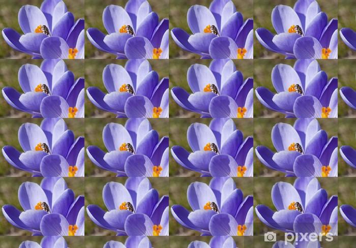 Tapeta na wymiar winylowa Wiosenne kwiaty z rozporkiem - Pory roku