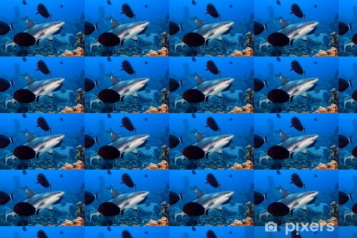 Papier peint vinyle sur mesure A mâchoires de requins gris prêt à attaquer sous-marine de près portrait - Animaux marins