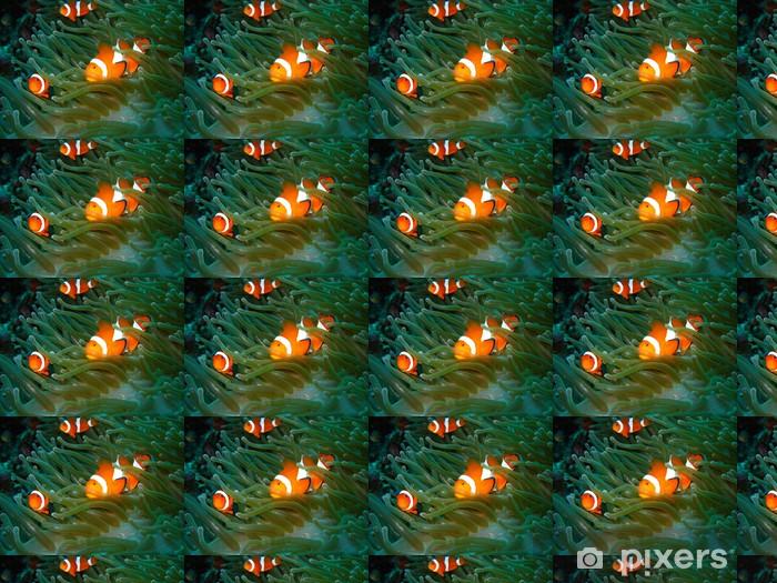 Vinyltapete nach Maß Tropical clown fish - Unterwasserwelt