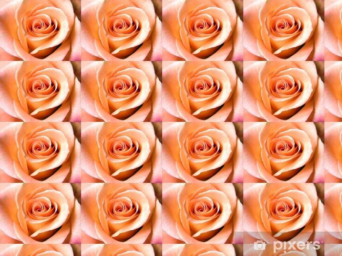 Tapeta na wymiar winylowa Piękne Samon róża. Close-up - Kwiaty