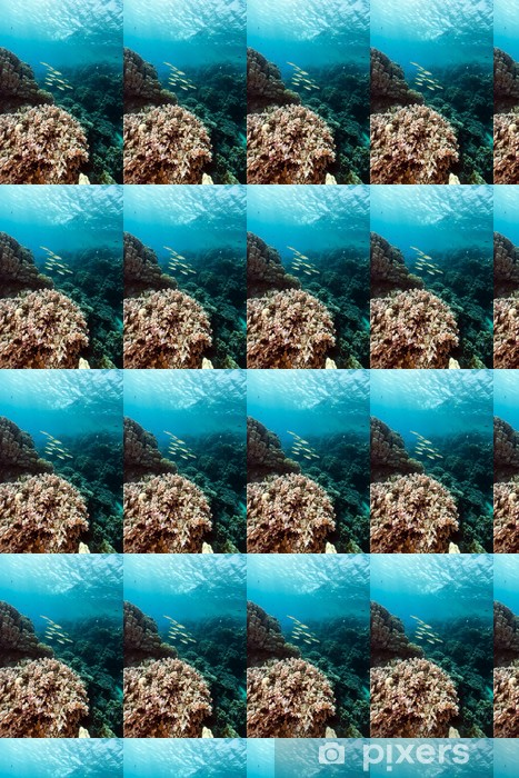 Vinyltapete nach Maß Fisch und tropischen Riff im Roten Meer. - Unterwasserwelt