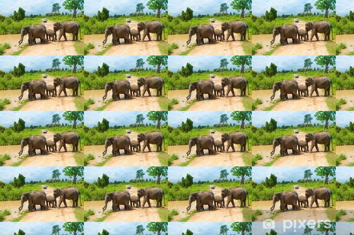 Papier peint vinyle sur mesure Groupe des éléphants sauvages - Thèmes