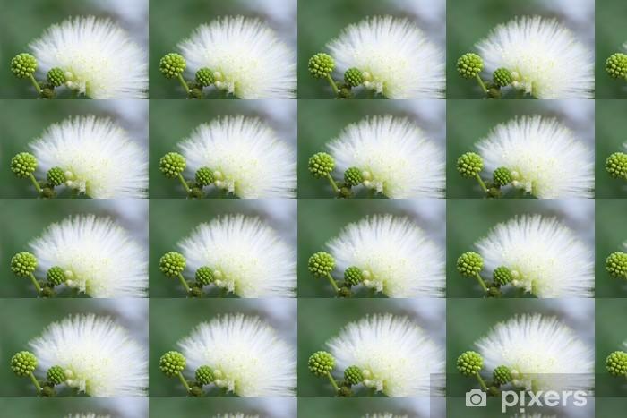 Tapeta na wymiar winylowa Cali Andora Haematokefara - Kwiaty