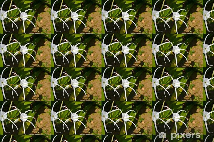 Colourful flowers in Singapore Botanic Gardens Vinyl custom-made wallpaper - Flowers