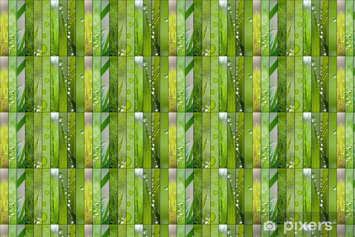 Papier peint vinyle sur mesure Vert printemps collage de dix images - Saisons