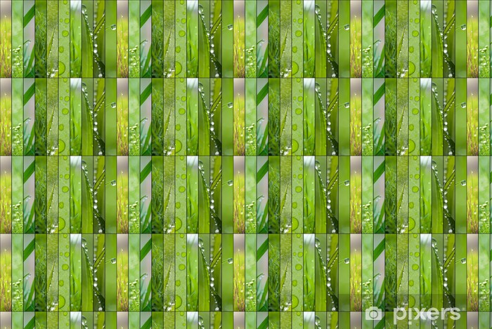 Spring green collage of ten images Vinyl custom-made wallpaper - Seasons