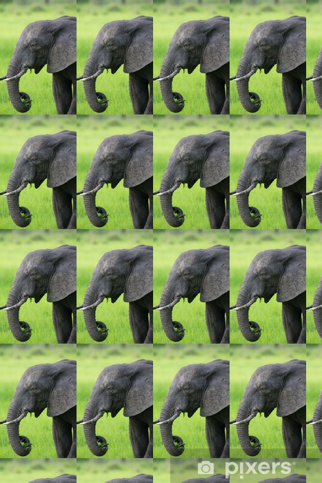 Vinyltapete nach Maß Elefant in Sambia, Afrika-Safari - Themen