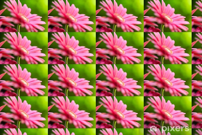 Pink gerbera daisy in the garden Vinyl custom-made wallpaper - Flowers