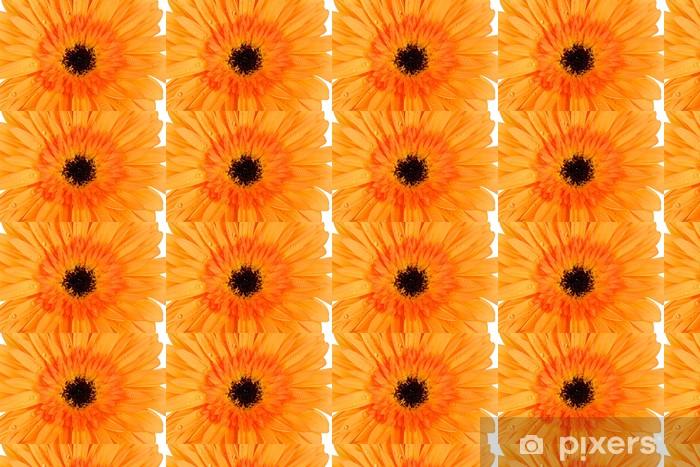 Papier peint vinyle sur mesure Belle fleur Gerber close-up - Fleurs