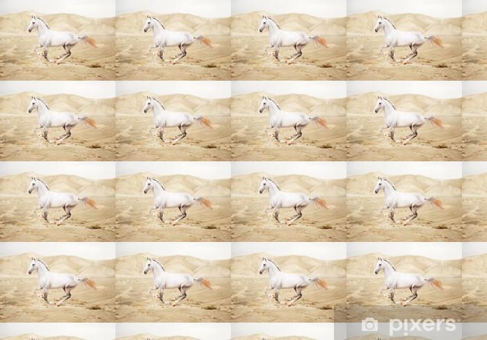 Vinyltapete nach Maß Reinrassige weißes arabisches Pferd in der Wüste - Säugetiere