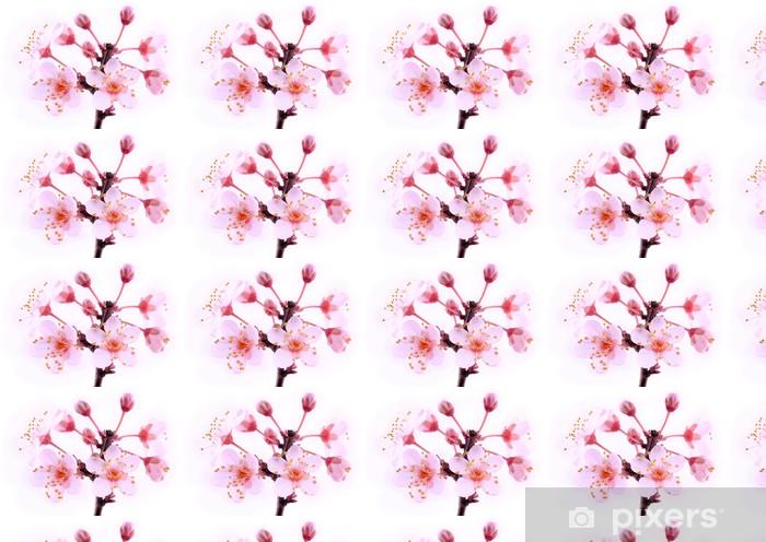 Tapeta na wymiar winylowa Różowe kwiaty, kwiat - Rośliny