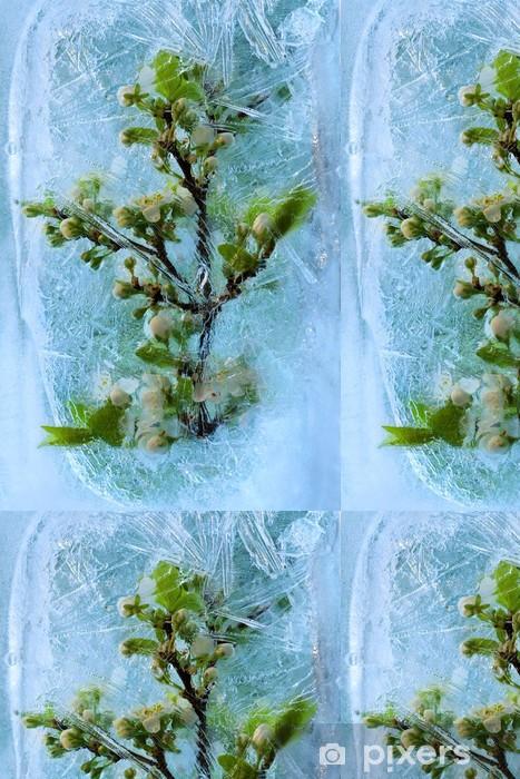 Vinylová Tapeta Frozen třešeň květ - Květiny