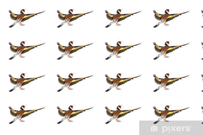 Vinyltapete nach Maß Stieglitz - Vögel