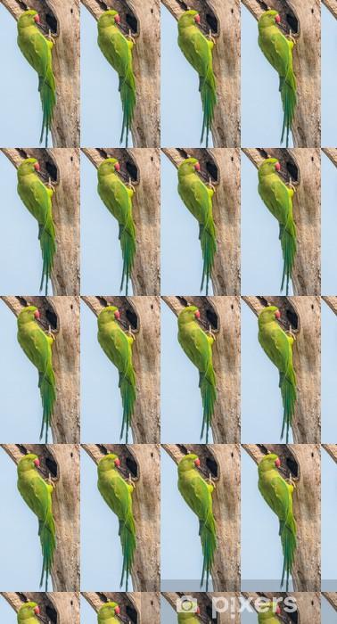Tapeta na wymiar winylowa Aleksandretta obrożna, siedzący na gałęzi drzewa, natura, kopia spa - Ptaki