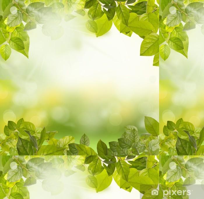 Vinil Duvar Kağıdı Yeşil yapraklar sabah -