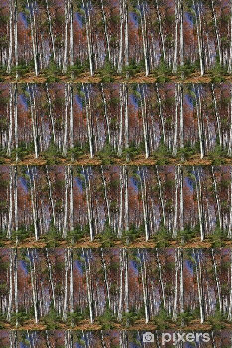 Vinyl behang, op maat gemaakt Forest - Europa