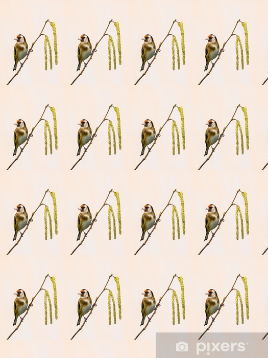 Goldfinch on Catkins Vinyl custom-made wallpaper - Birds