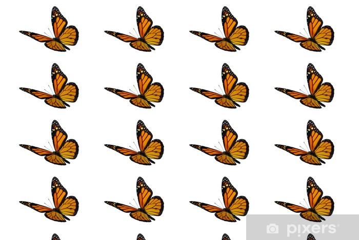 Papier peint vinyle sur mesure Monarque (Danaus plexippus), un papillon migrateur - Autres Autres