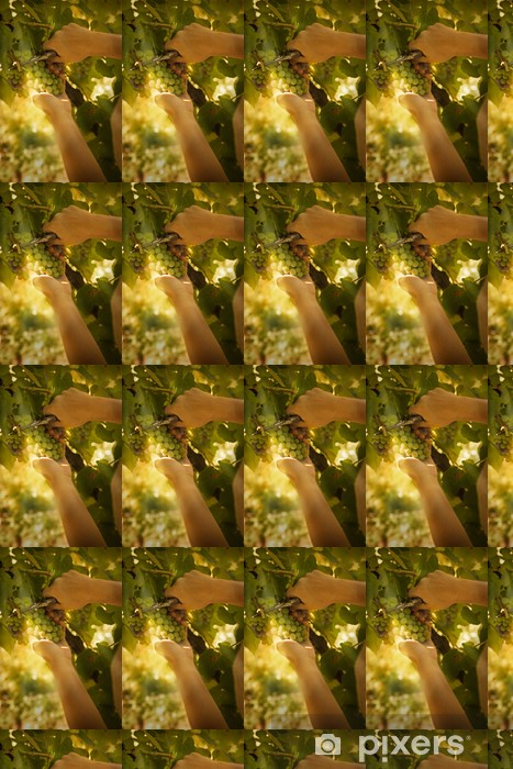 Papier peint vinyle sur mesure Vendanges - Saisons
