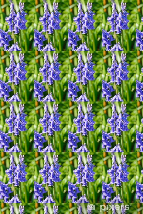 Nærbillede af Bluebells Personlige vinyltapet - Blomster