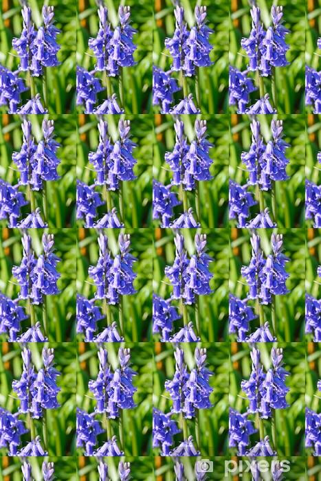 Lähikuva sinivalkoista Räätälöity vinyylitapetti - Kukat
