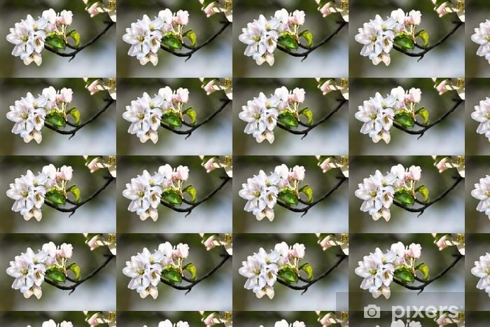 Tapeta na wymiar winylowa Sunshine na appleblossom wiosną - Pory roku