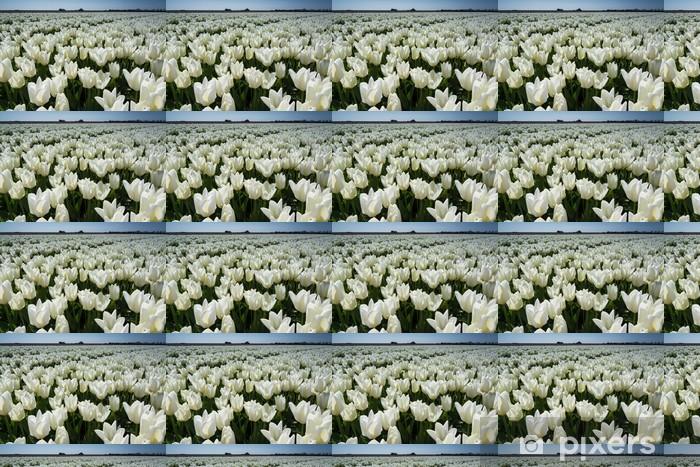 Vinyltapete nach Maß Feld der Tulpen mit einem blauen Himmel - Blumen