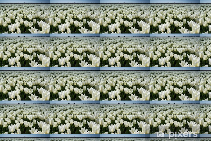 field of tulips with a blue sky Vinyl custom-made wallpaper - Flowers
