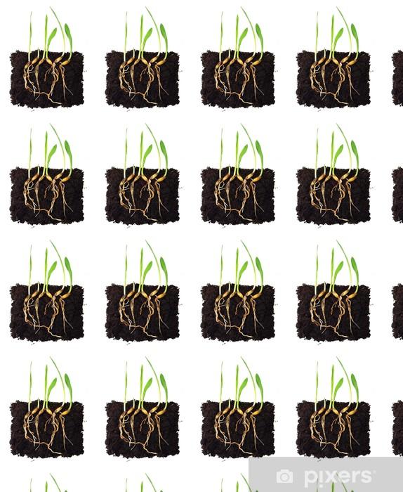 Vinyltapete nach Maß Grünes Gras Kohl mit Wurzeln. - Pflanzen