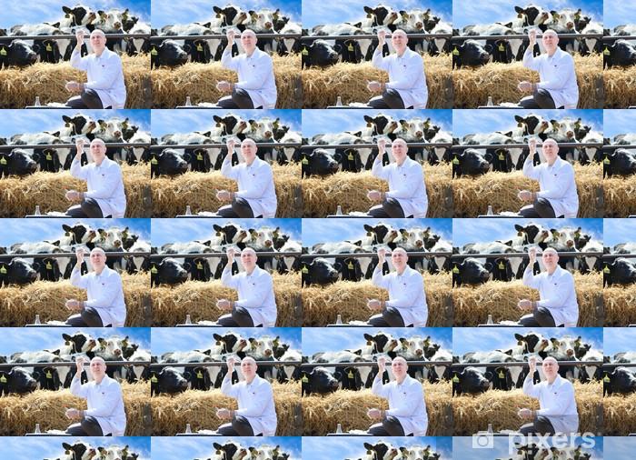 Tapeta na wymiar winylowa Mężczyzna lekarz weterynarii krów w gospodarstwie odbywa analizuje - Zawody