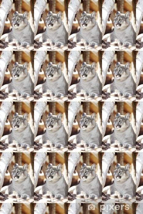 Vinyltapete nach Maß Puma - Säugetiere
