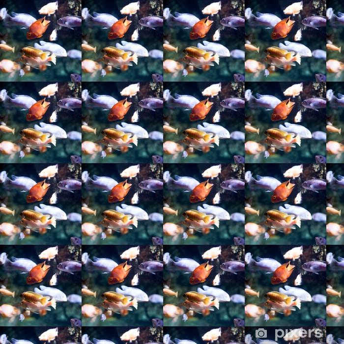 Kuva trooppisista kaloista Räätälöity vinyylitapetti - Merenelävät