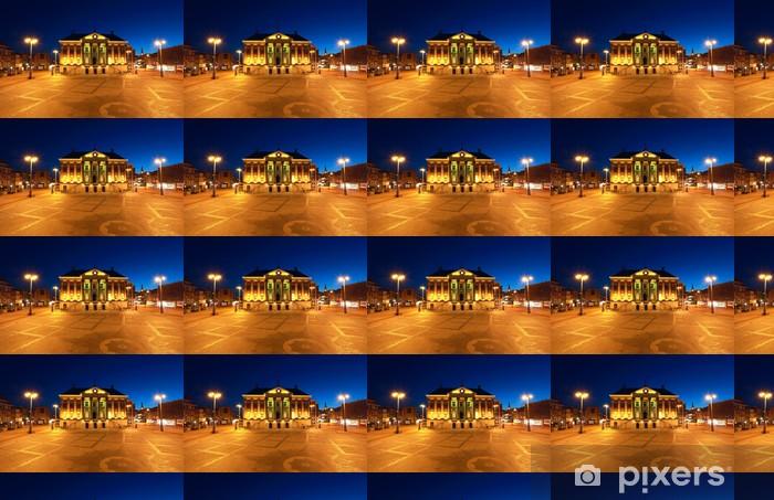 City Hall in Groningen at night Vinyl custom-made wallpaper - Europe