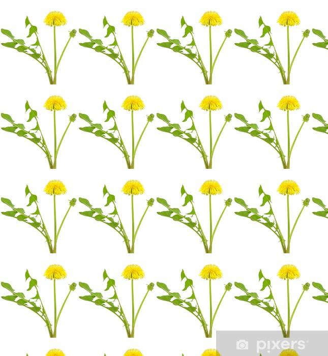 Vinylová tapeta na míru Pampeliška květ - Květiny