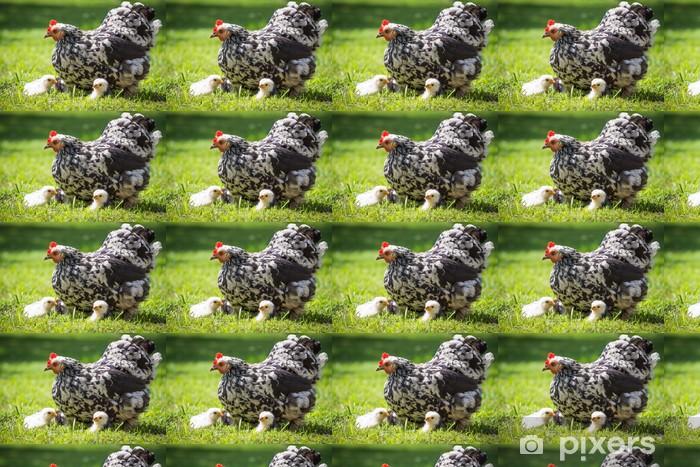 Papier peint vinyle sur mesure Poule avec les poussins - Oiseaux