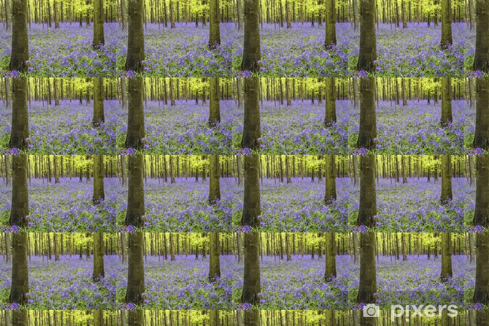 Tapeta na wymiar winylowa Żywe błękitna dywan las krajobraz wiosna - Lasy