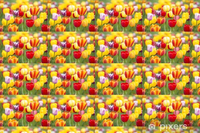 Colorful Tulips Vinyl custom-made wallpaper - Themes