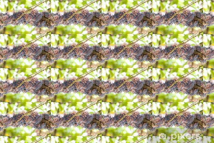 Papier peint vinyle sur mesure Groupe de fleurs colorées. - Saisons