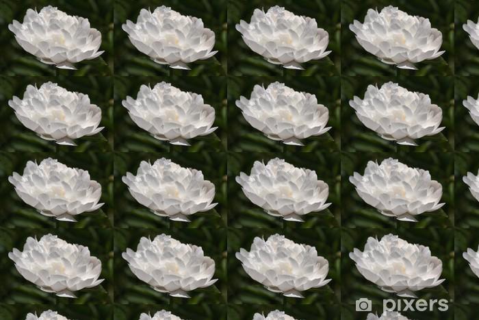 Papier peint vinyle sur mesure Pivoine - Fleurs