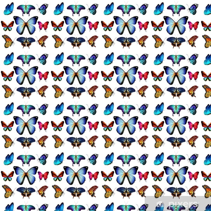 Many different butterflies flying, isolated on white background Vinyl Custom-made Wallpaper - Other Other