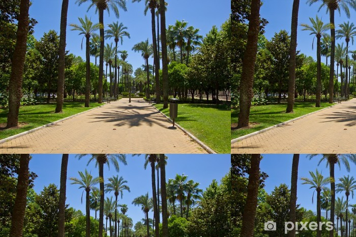 Vinylová Tapeta Park v Cordoba, Španělsko - Evropa