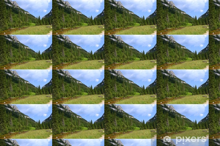 Papier peint vinyle sur mesure Tatra Mountains.Kościeliska Valley.Poland - Vacances
