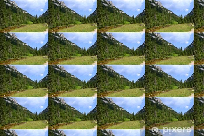 Tapeta na wymiar winylowa Tatra Mountains.Kościeliska Valley.Poland - Wakacje