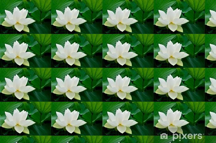 Papier peint vinyle sur mesure Lotus antique - Saisons