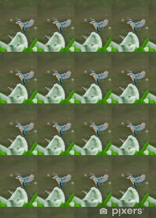 Tapeta na wymiar winylowa Unosząc Kingfisher - Ptaki