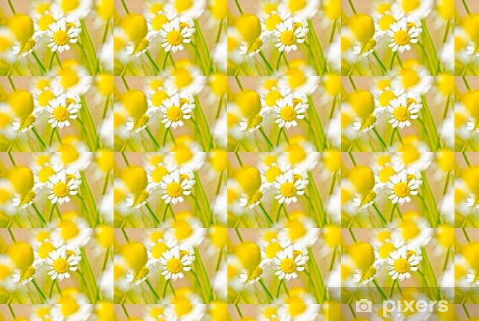 Özel Boyutlu Vinil Duvar Kağıdı Papatya adlı çayır - Çiçekler