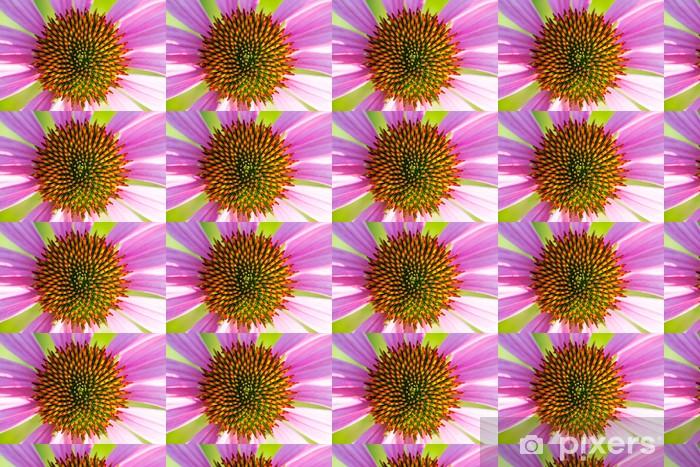 Papier peint vinyle sur mesure Inflorescence de l'échinacée - Fleurs