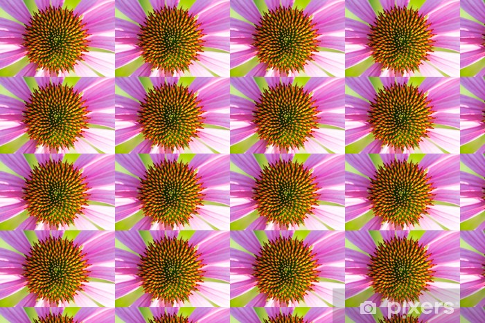 Måttanpassad vinyltapet Blomställning av Echinacea - Blommor